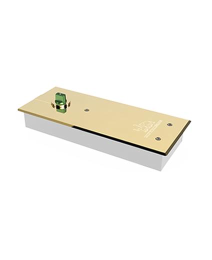 Bản lề sàn  SS 03 Vàng - 150kg